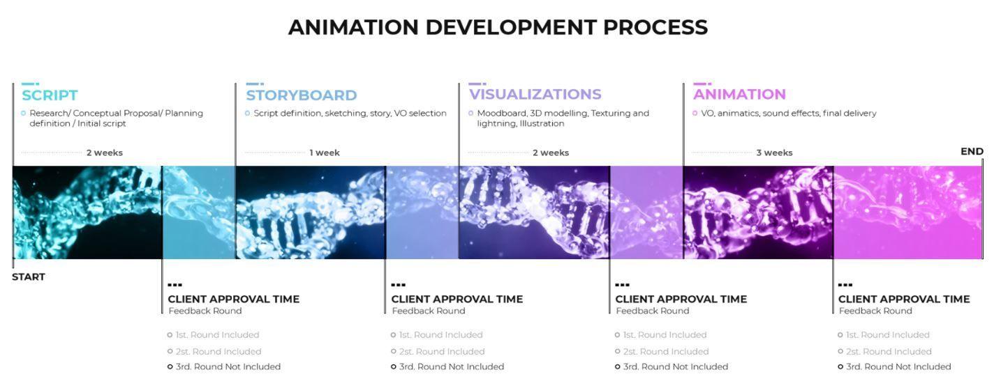 Workflow Timeline