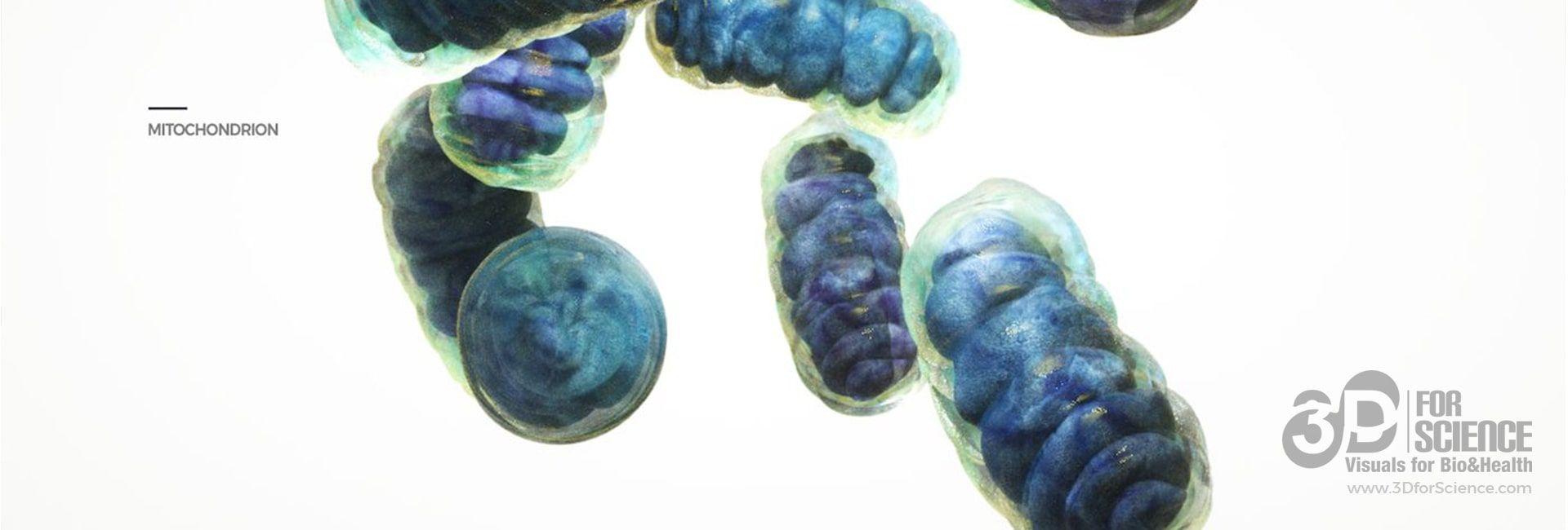 mAbxience biosimilar medicines